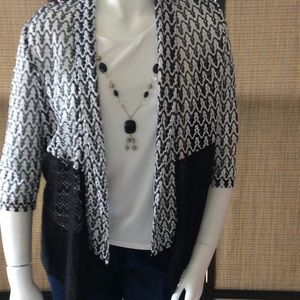 Alfred Dunner 2 in 1 top with matching necklace
